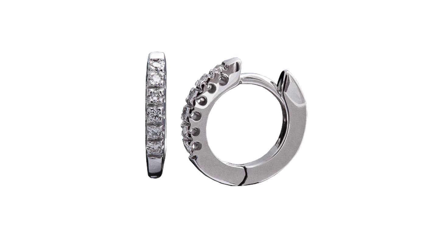 3009 – Orecchini in oro bianco e diamanti naturali